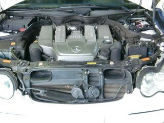 W113 germancars 001.JPG