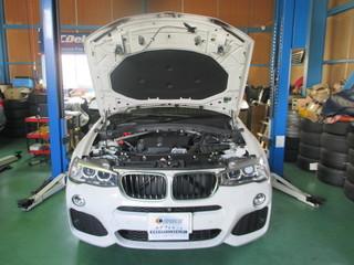 BMW X3 brike 001.JPG